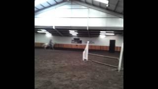 Horse Riding xxx