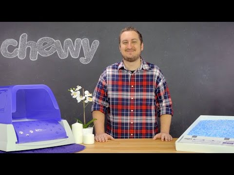 PetSafe Scoop-Free Cat Litter Box | Chewy