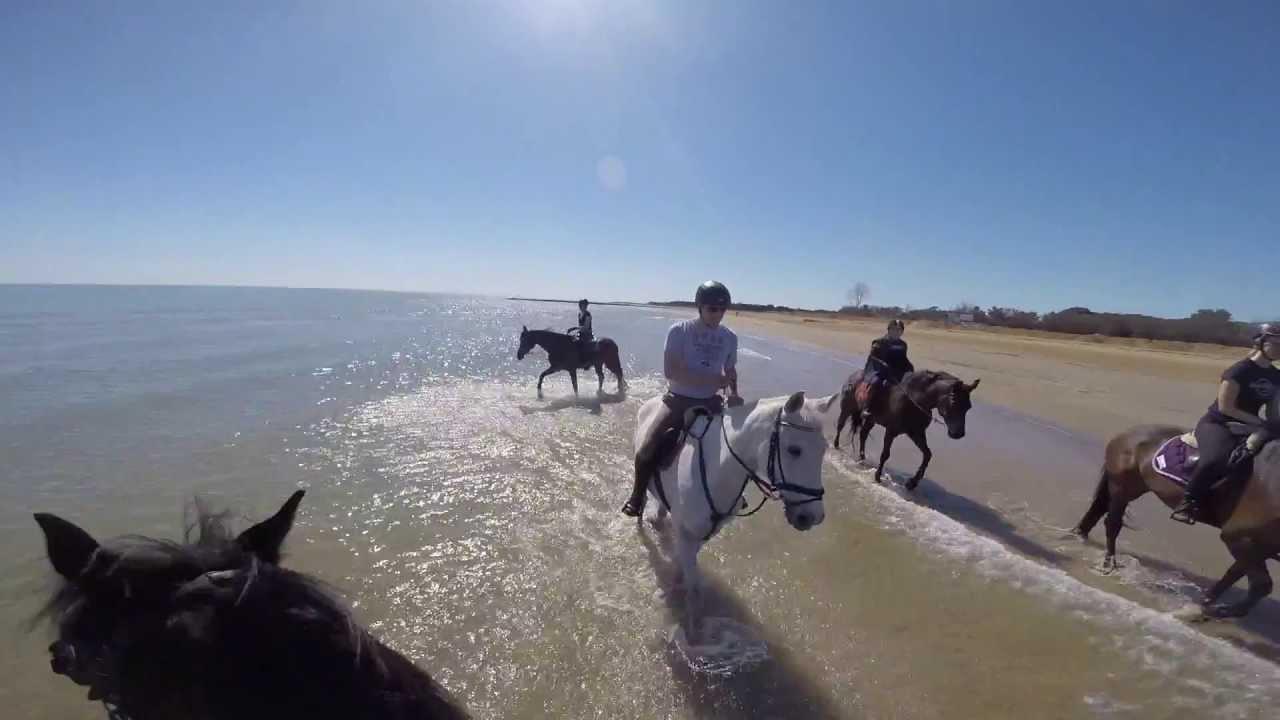 Strandreiten Lignano 2015 Youtube