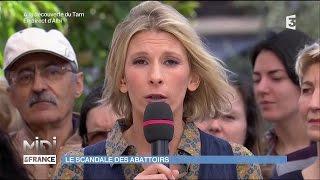 Nouveau scandale de maltraitance animale dans un abattoir français