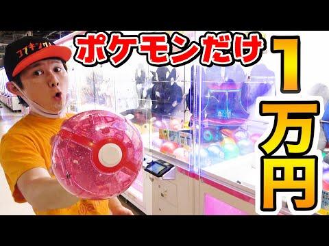 クレーンゲーム1万円でポケモン景品狙いでやったら何種類ゲットできるのか?!