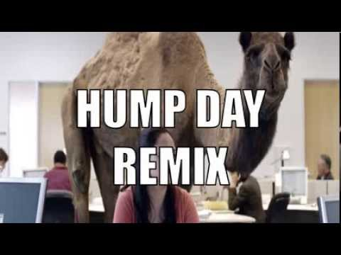 Geico Hump Day Commercial Happy Camel Dubstep Remix Youtube