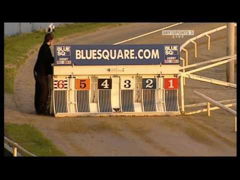 Swift Jade wins Blue Square Marathon