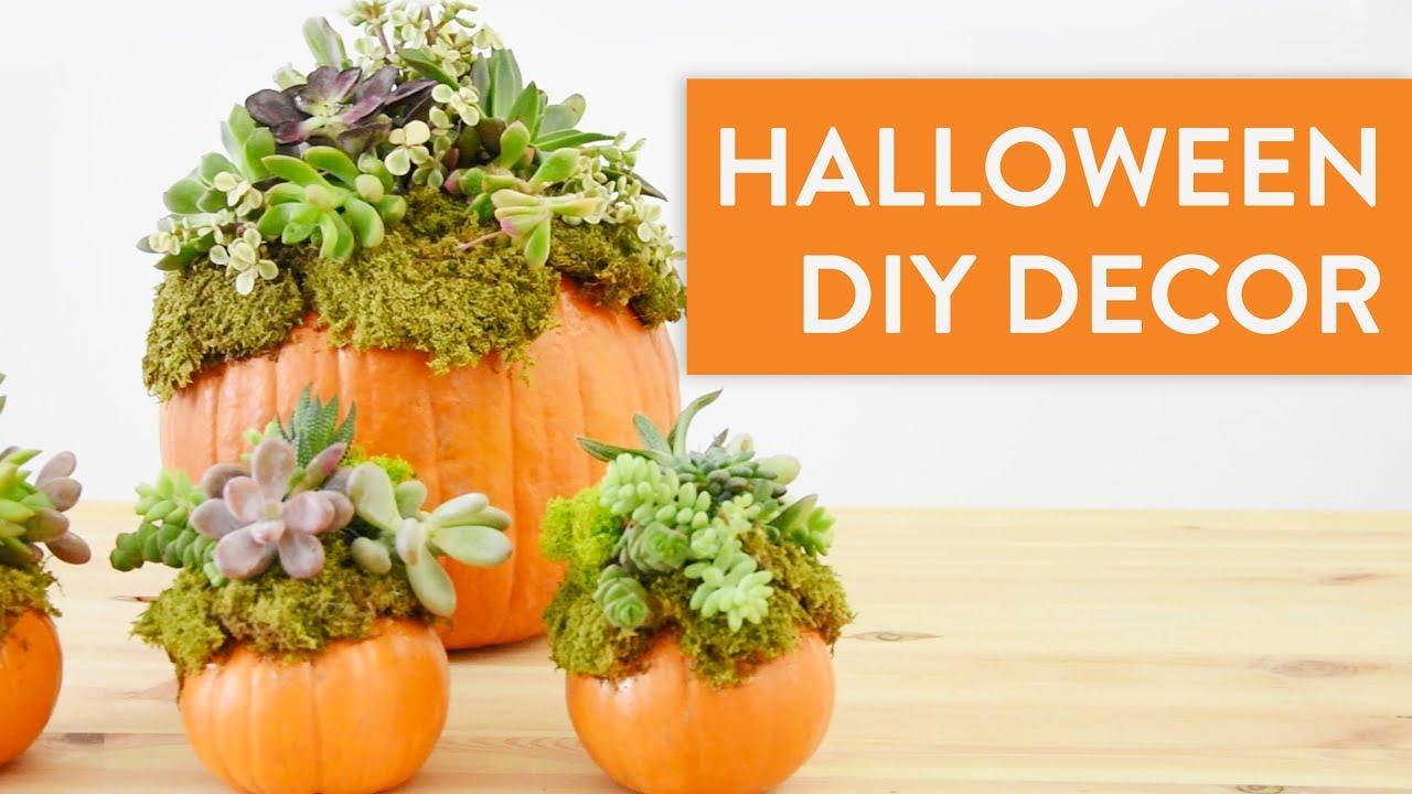 Intagliare Zucca Per Halloween Disegni come creare originali zucche per halloween | basil green pencil
