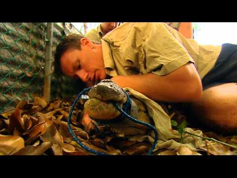 Outback Wildlife Rescue Episode 10