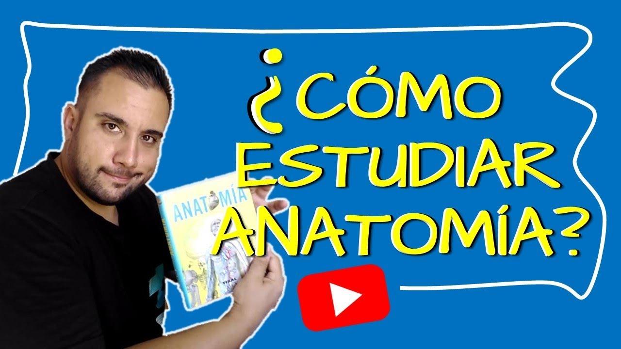 CÓMO ESTUDIAR ANATOMÍA - YouTube