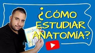 cmo-estudiar-anatoma