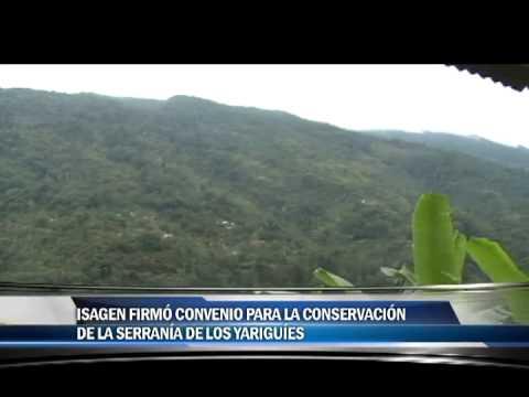 ISAGEN Firmó convenio para la conservación de la serrania de los yariguies