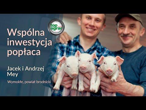 TAP TV. Wspólna chlewnia – plan zrealizowany! Andrzej i Jacek Mey