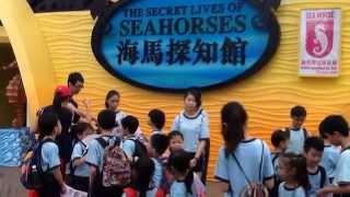 Publication Date: 2014-07-02 | Video Title: 仁濟醫院趙曾學韞小學 賽馬會海洋公園教育計劃 x 「有機上網