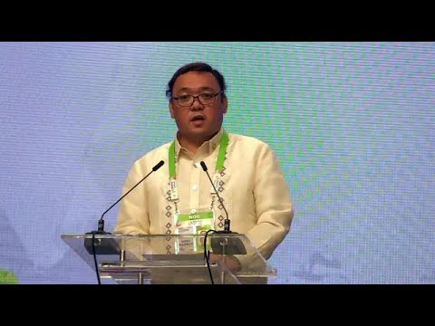 Rohingya plight discussed in Asean plenary, says Roque