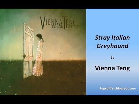 Vienna Teng - Stray Italian Greyhound (Lyrics)