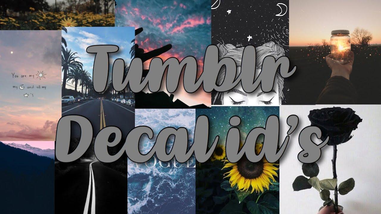 Tumblr Picture Codes