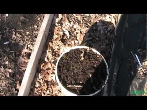 how to get a free compost bin