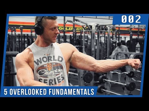 5 Bodybuilding FUNDAMENTALS You're Not Paying Enough Attention To
