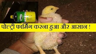 पोल्ट्री फार्मिंग करना हुआ और भी आसान ! poulry farming update by abhishek singh poultry !