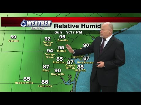 Fair to partly cloudy, warm and humid through work week