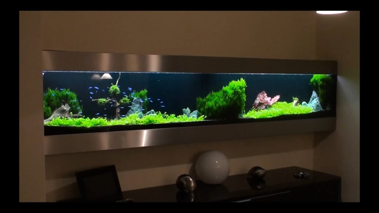 Wandaquarium 102013 youtube - Aquarium wand ...