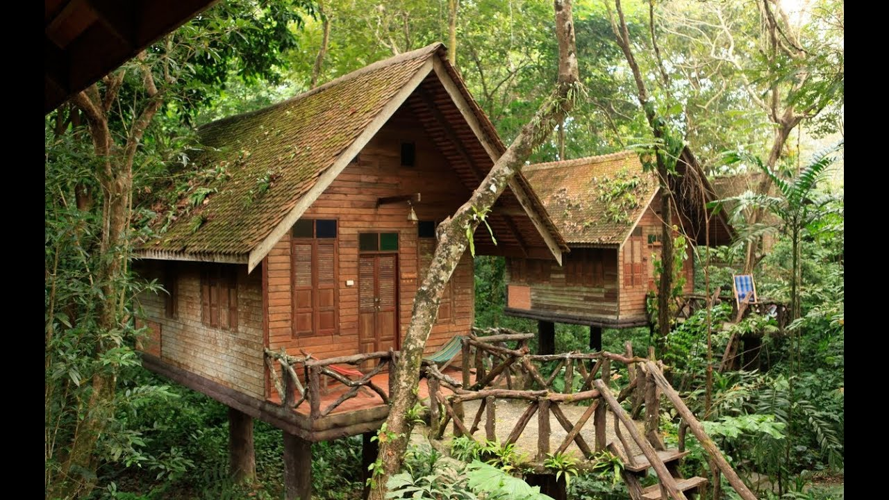 Arts Riverview Lodge im Khao Sok NP - YouTube