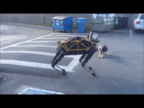 Истории робота-собаки Озвучка Google Внимание, мат