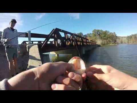 Flipping Bridges For Winter Bass At Lake Purdy