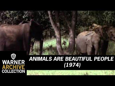 Animals Are Beautiful People (Original Theatrical Trailer)