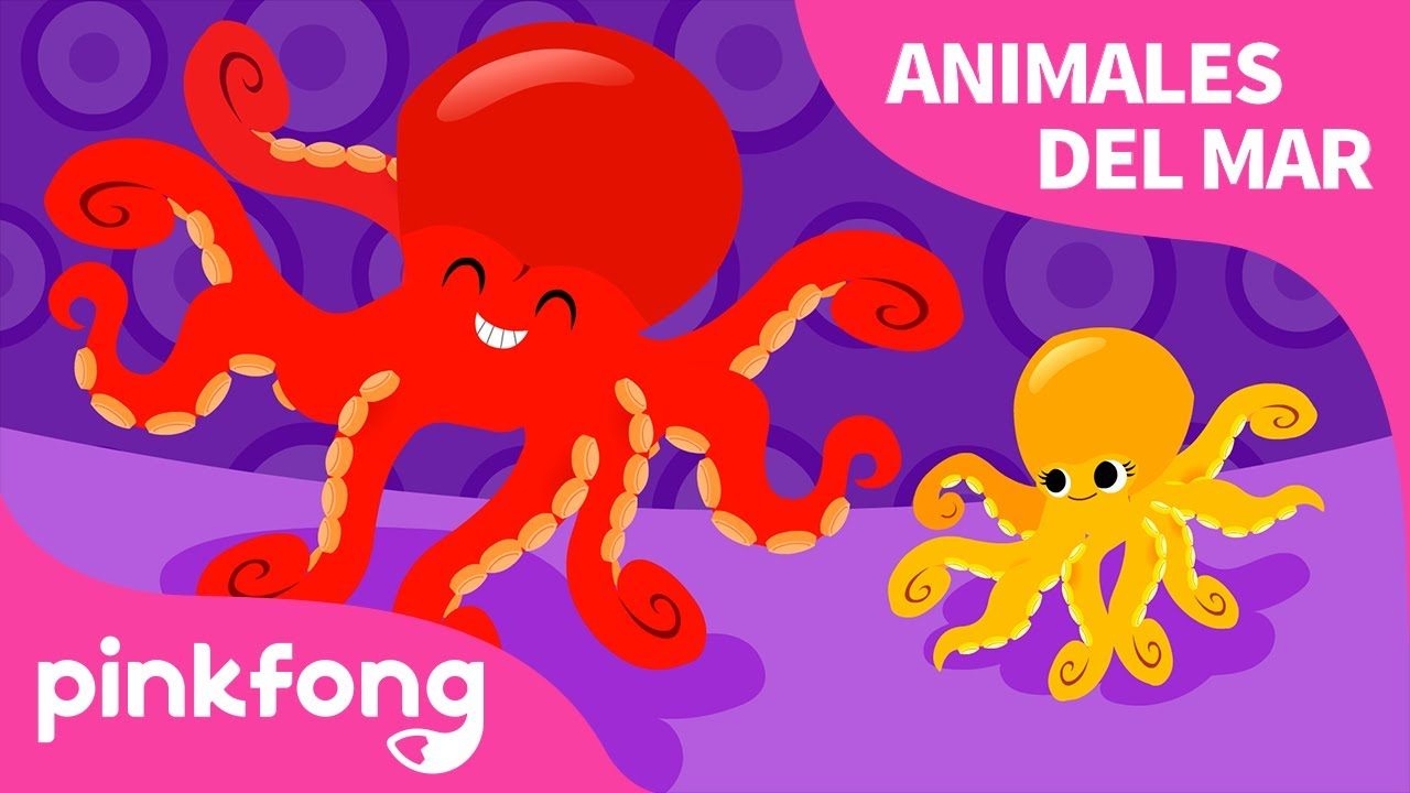 Pulpo | Animales del Mar | Pinkfong Canciones Infantiles
