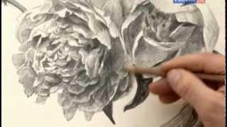 Урок рисования. Пионы