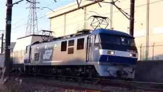 2019/01/13 JR貨物 朝の貨物列車7本 5091レと5052レの離合場面(120fps)