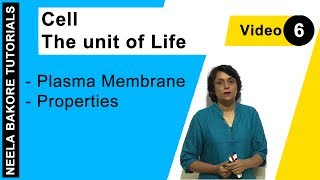 Cell - The unit of Life - Plasma Membrane - Properties