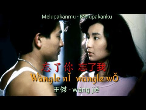 忘了你  忘了我  Wang Le Ni, Wang Le Wo -王傑 - Wang Jie (Lyrics)