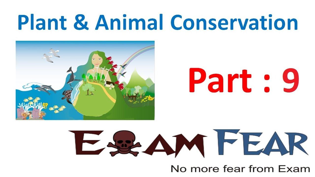 L9 : Endemic Species - Plants & Animal Conservation, Science