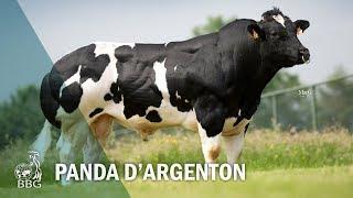 PANDA D'ARGENTON - Portes ouvertes BBG 2017