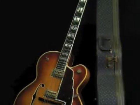 Photographs of Vintage Guitars at Lark Street Music by Dr. Jonathan Singer