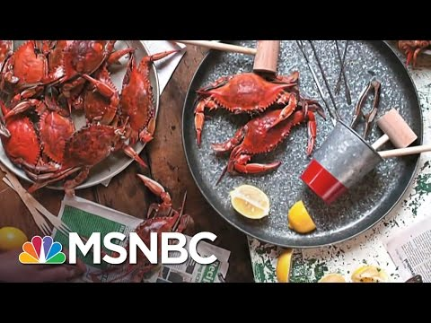 Small Business Success: Melba's Comfort Food In Harlem | MSNBC