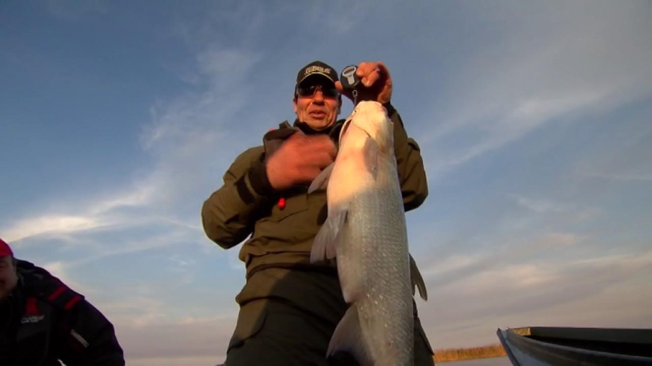 рыбак рыбаку на 11 канале 2017