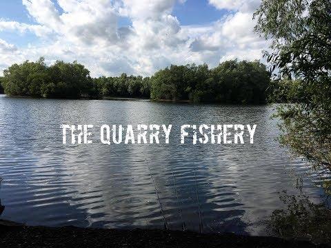 The Quarry Fishery  Essex