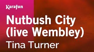 Karaoke Nutbush City (live Wembley) - Tina Turner *