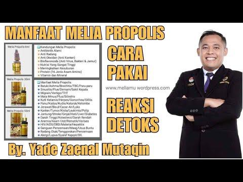 MELIA PROPOLIS: Manfaat Melia Propolis, Cara Pakai Melia Propolis & Reaksinya