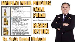 Melia Propolis - Manfaat Melia Propolis, Cara Pakai & Reaksi