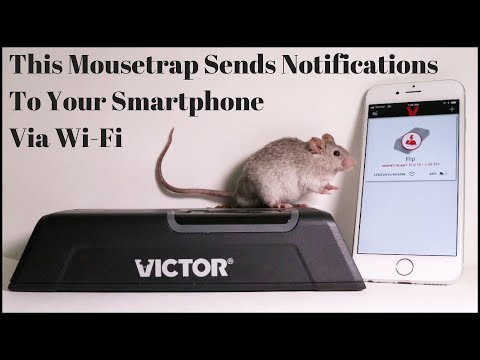 High Tech Mousetrap That Sends Notifications To Your Smartphone - Victor Smart Electronic Mousetrap.