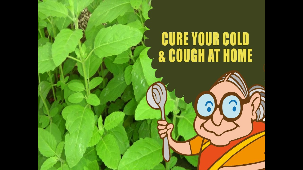Cough cold ayurvedic natural home remedies for coldcough cough cold ayurvedic natural home remedies for coldcough flue tulsi juice youtube ccuart Image collections