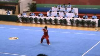 2010年全国武术套路冠军赛枪术 王宏胤