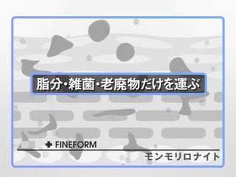 FINEFORM(ファインフォーム) モンモリロナイト