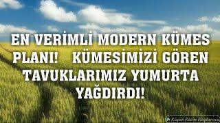 YENİ  MODERN KÜMES!-FOLLUKTAN YUMURTA TOPLAMA-YENİ TİNDET TAVUKLARI