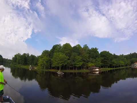 Lake Chesdin Cattle Creek ! Must Watch !