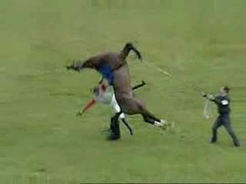 Horse VS Man