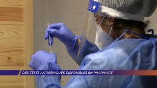 Yvelines | Des tests antigéniques disponibles en pharmacie