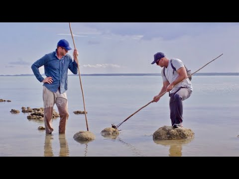 Ep.7 Spearing At Mud Crab Beach. Mud Crab & Mangrove Jack Catch And Cook - FISHING THE WILD NT