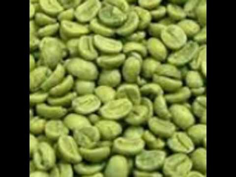 0856.4676.7733, Kopi Hijau Penurun Berat Badan, Green Coffee Diet